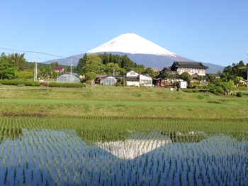 fuji20130517-2.JPG