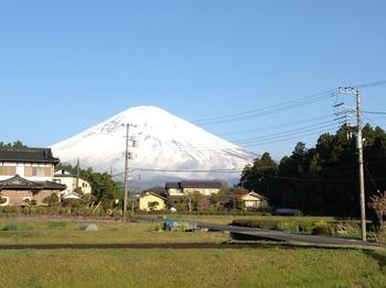 fuji2013420.JPG